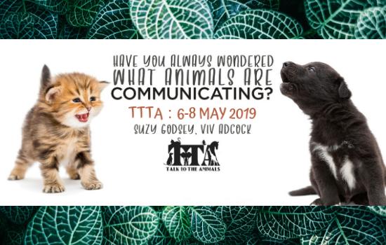 VA - TTTA start MAY 2019 - v2